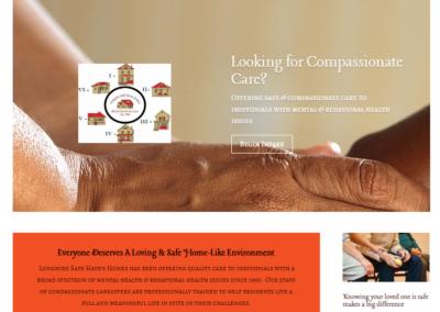 New website for Lshh.org, website, website design, web design, web development